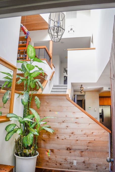 Tri Level floor plan