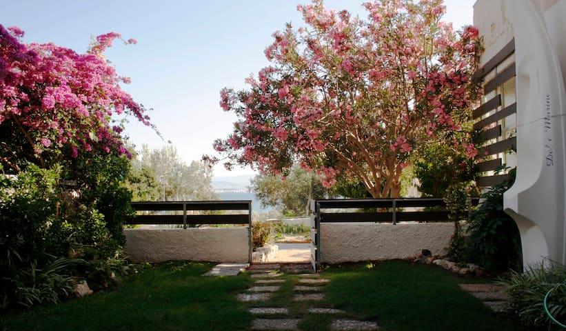 Beachfront Garden Apartment- Atlas complex