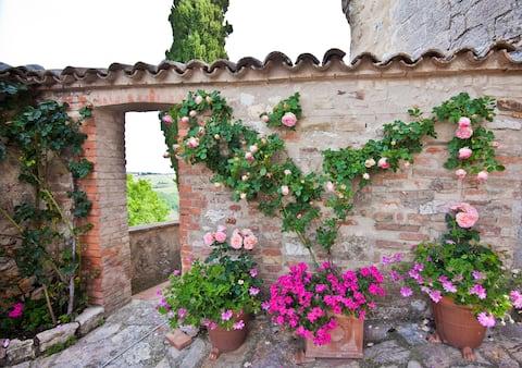 Casa Verde - a designers dream in Italy