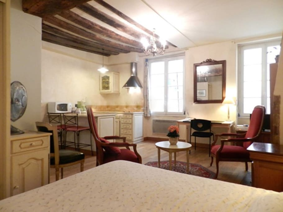 Living   The 19 square meters living room has 2 double glazed windows facing courtyard . It is equipped with : dining table for 2 people, double bed (1.40m), coffee table, TV, 2 armchairs, built-in shelves, decorative fireplace, hard wood floor.