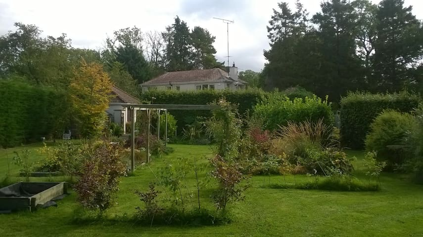 Cottage on 1 acre of ground - Naas - House