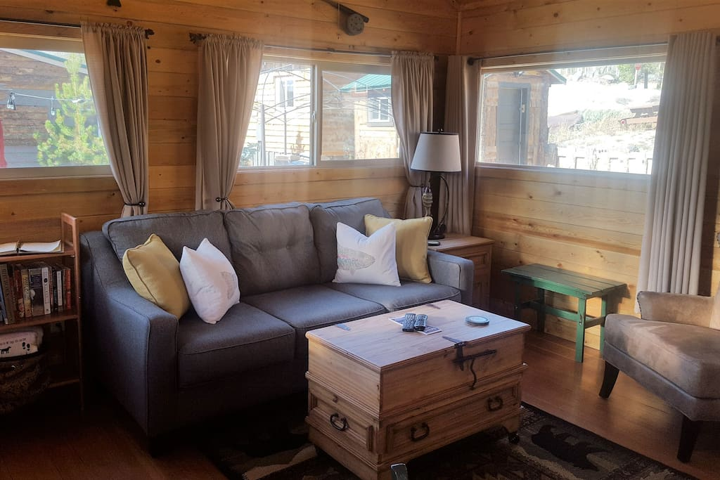 Living space with new queen sleeper sofa.