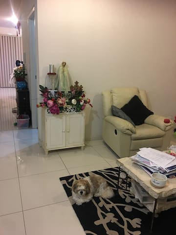 Comfortable home in Lidcombe