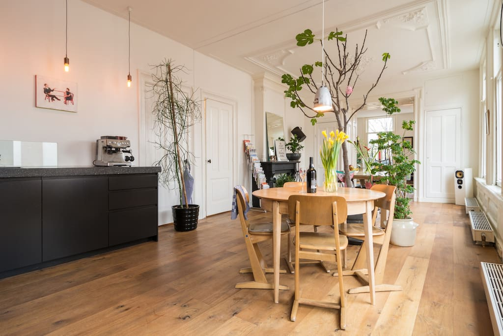 Spacious vondelpark fam house 5bd 3bt roof garden loft for Camere affitto amsterdam