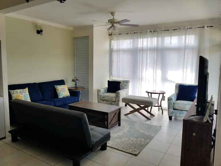Cozy newly renovated 2 BR 2.5 BR APT in Mona
