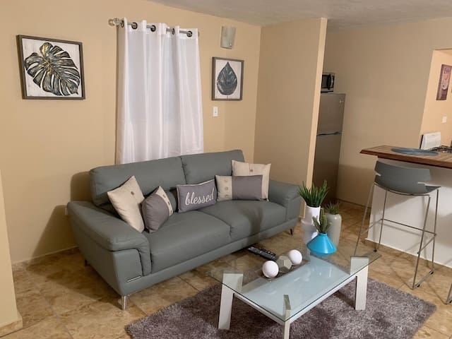 Cozy apt 10 mins from airport free WiFi & parking