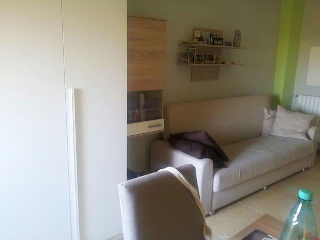 Ampia camera illuminata - Ferrara - Apartment