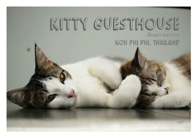Kitty Guesthouse , Koh Phi Phi (Superior Room)