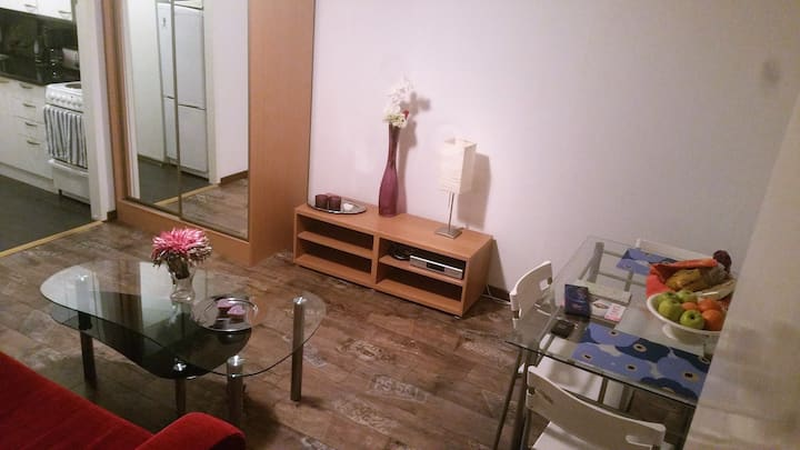 2 rooms & terrace, 4 pers, quick link to downtown!