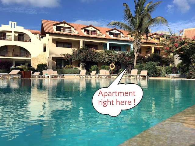 Groundfloor apartment right in front of pool and ocean.