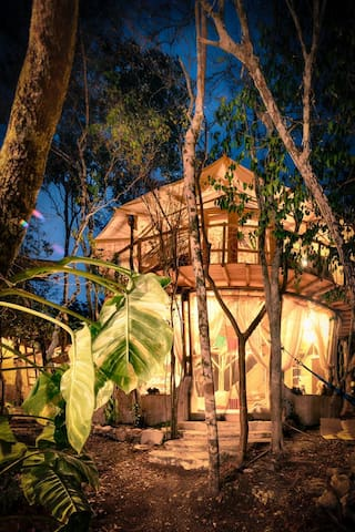 Eco Jungle /Cenote house within a community