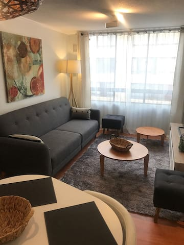 Centrally located apartment in Barrio BellasArtes
