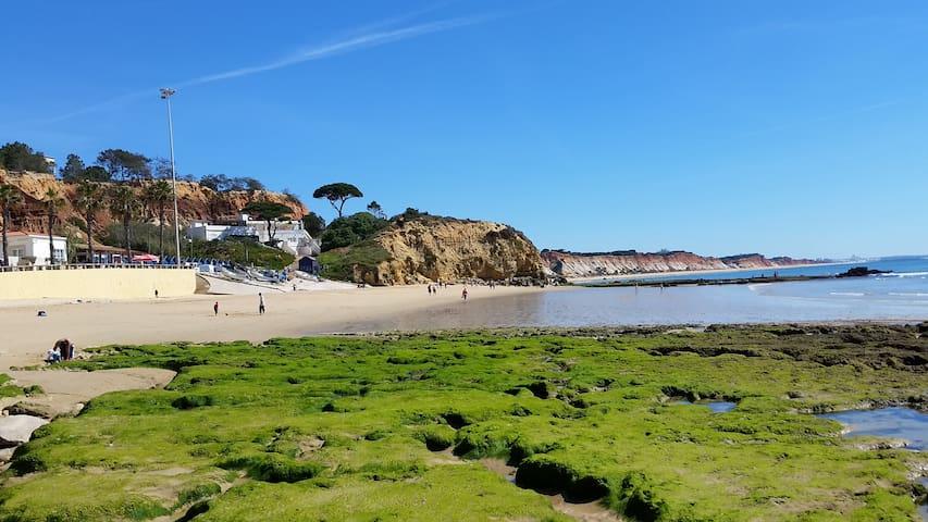 Vista das Ondas - T1 Olhos de Agua a 500m da praia