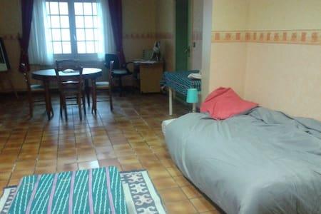 grande chambre dans maison avec jardin - Carvin