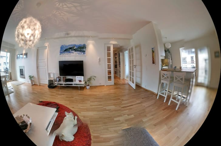 Spacious apartment in Fornebu with a great veiw - Fornebu - Pis