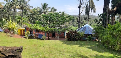 Dandeli David Jungle Cottage