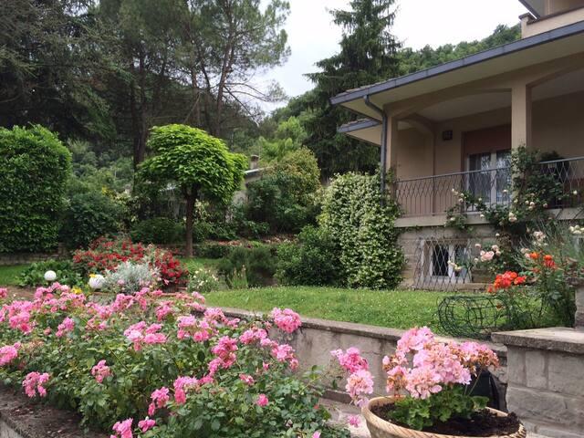 Casa di Luca/Luca's house