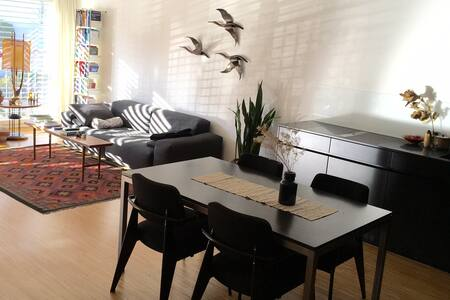 BASEL WORLD - 2.5 room apartment - Basel