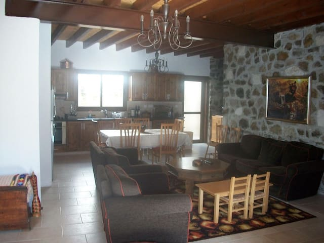 Relaxing villa Paphos Agia marina - Amargeti - House