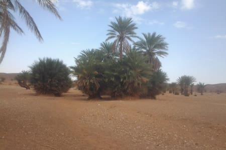 Camel Tour Sahara - Merzouga