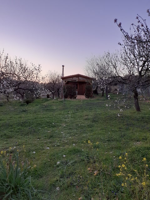 Wooden house with almond trees 15 min from ATH ARP