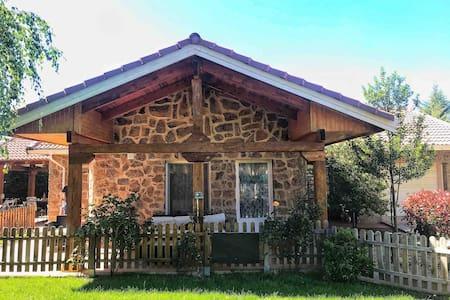 Casa con encanto en Riaza, camino del Rasero