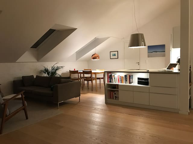 Loft with private roof terrace, near Royal Palace - Oslo - Lejlighed