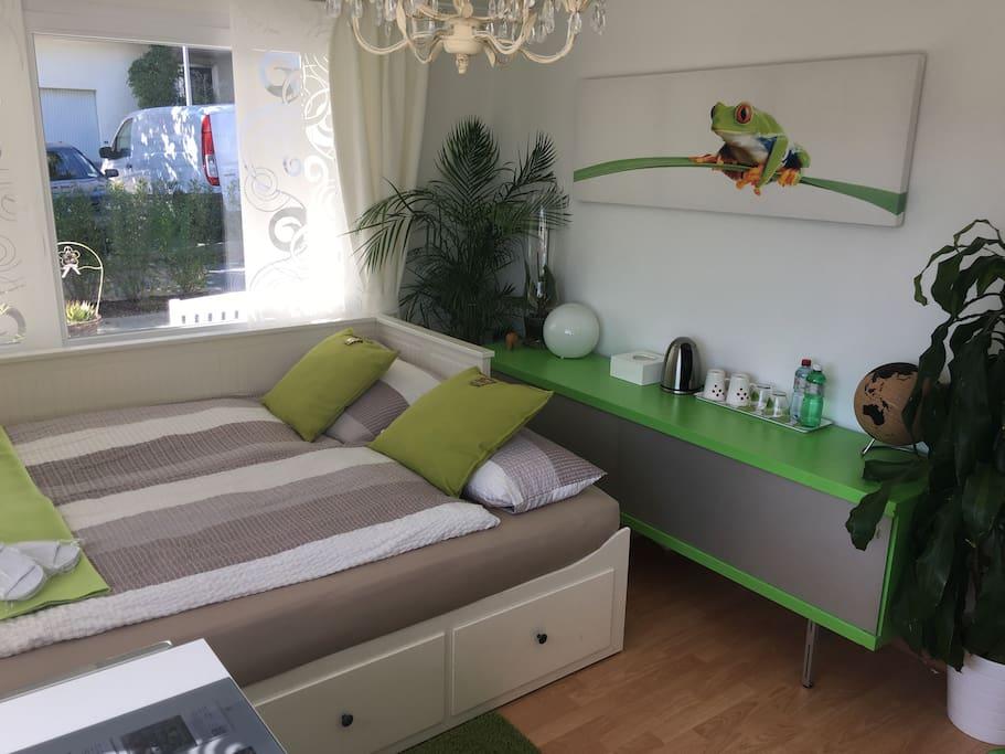 modernes haus im gr nen und dennoch nah zur city h user zur miete in regensdorf z rich schweiz. Black Bedroom Furniture Sets. Home Design Ideas