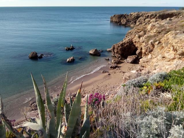 Les pieds dans l'eau à Sète