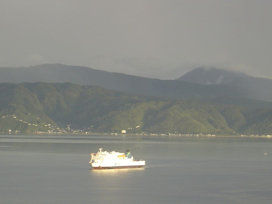 ...watch the sea, sky and light constantly change.  See the sunlight reflecting off the interislander ferry...