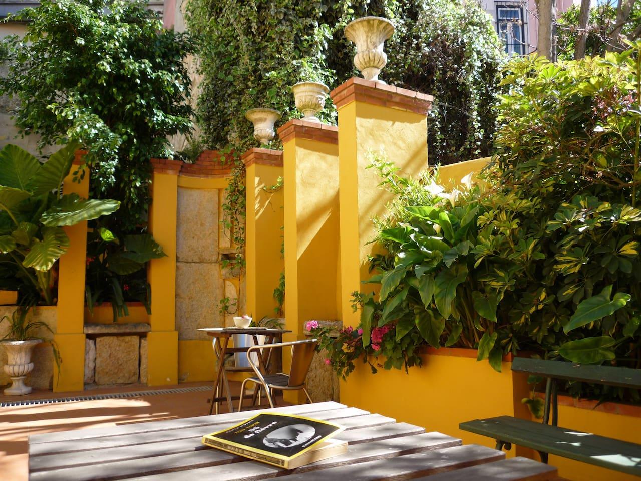 Sunny & lush private garden