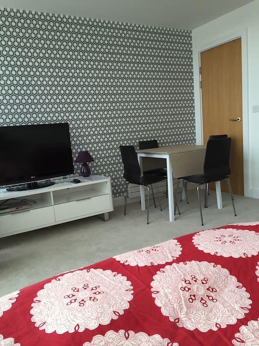 """Everything was as described and the room is a lovely modern apartment in the city centre"""