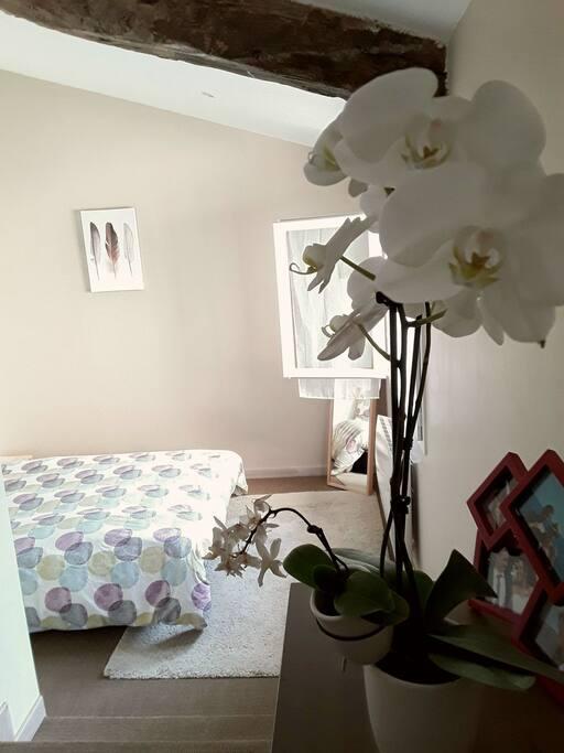 La chambre, avec son accès indépendant et donnant sur le jardin