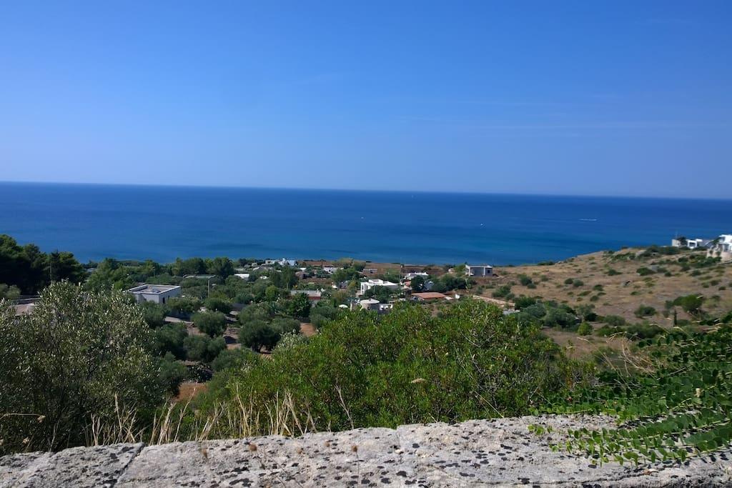 Panorama mare Torre Vada dall'Alto