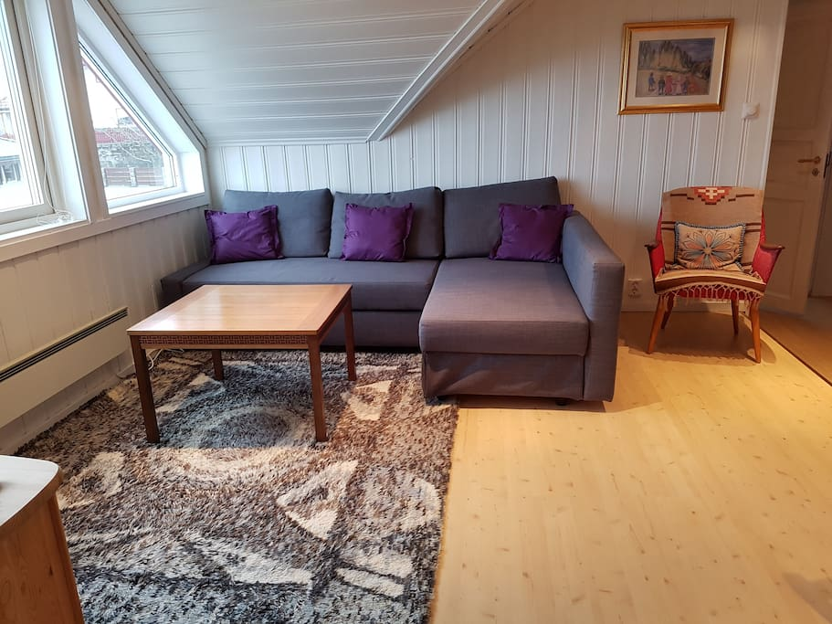 Stue/Living room 2