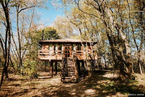 Porumbacu tree house close to Carpathian mountains