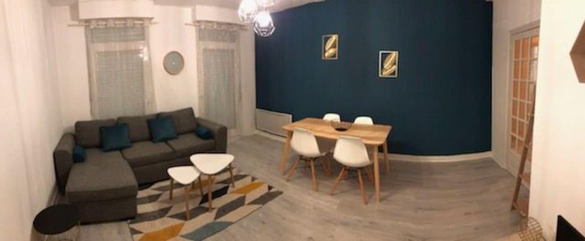 Salon, salle à manger avec canapé lit.