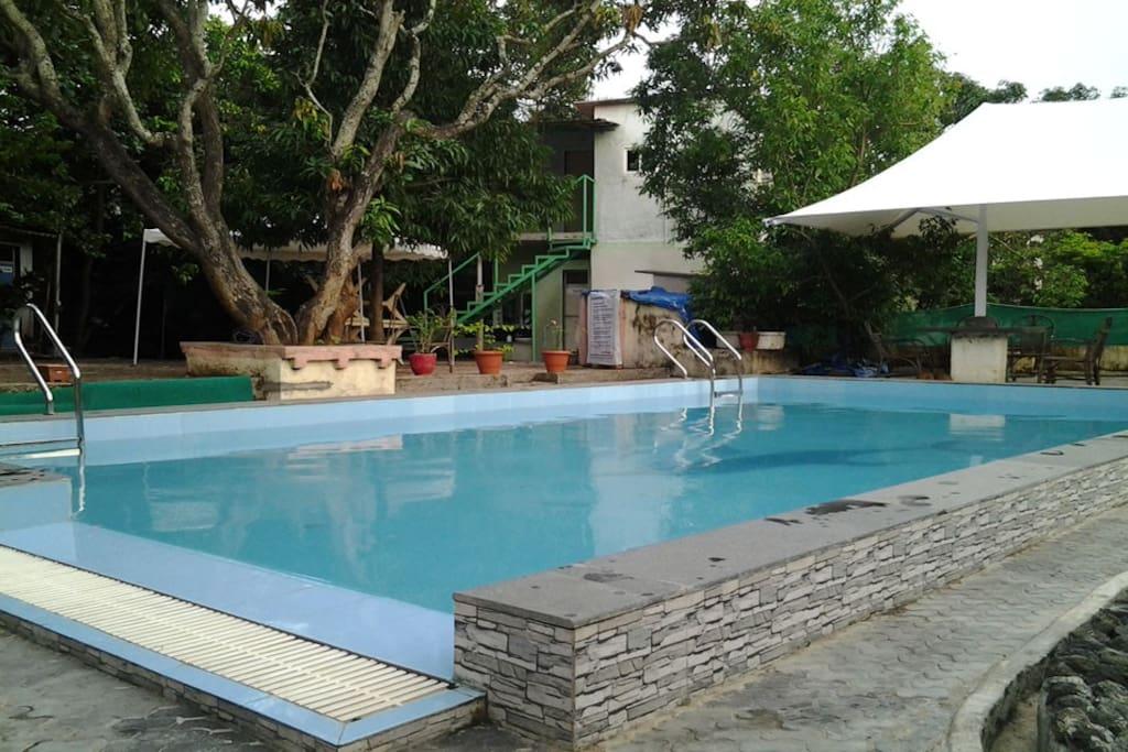 Bungalow At Gorai With Swimming Pool Bungalows For Rent In Mumbai Maharashtra India