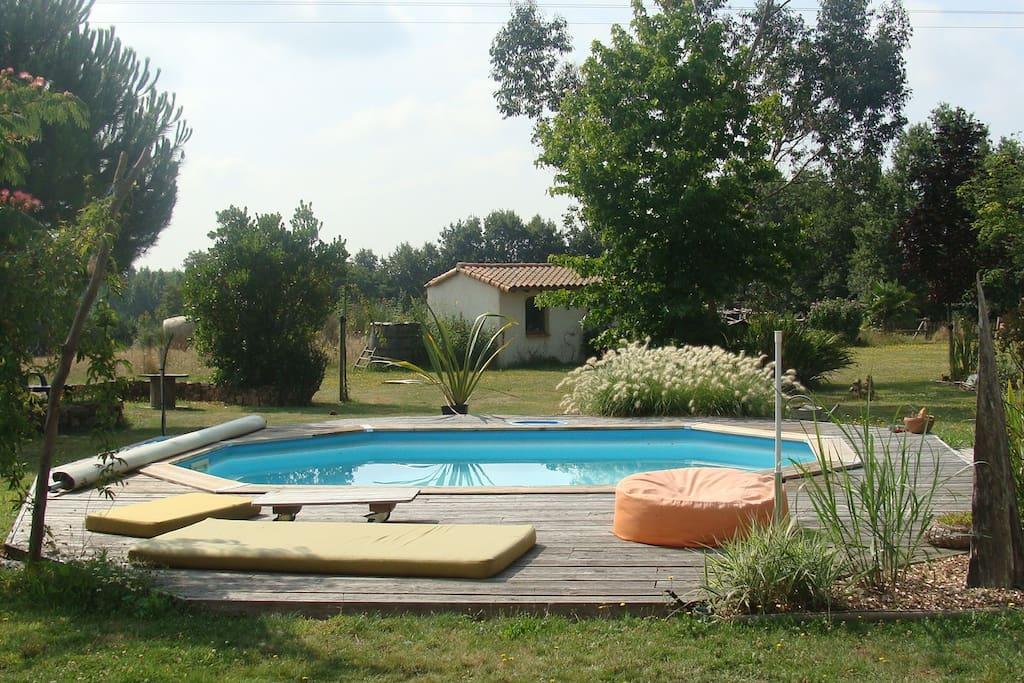 la piscine dans un cadre naturel