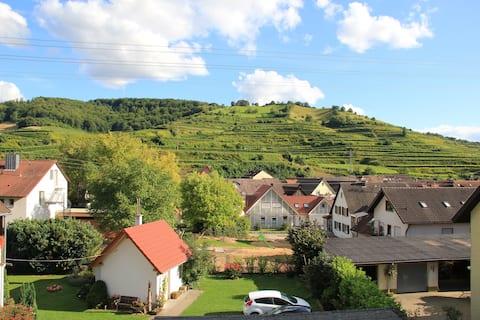 Ferienwohnung Winzerhof von Weinbergen umgeben 1
