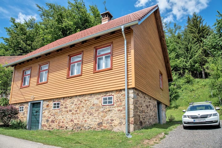 Two Bedroom House near Risnjak national park, in Plešće