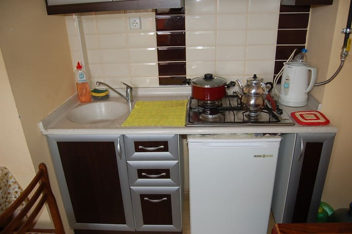 2 oda ve mutfaklı şehir evi - Tepebaşı