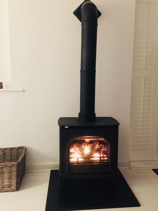 Feature gas wood burner