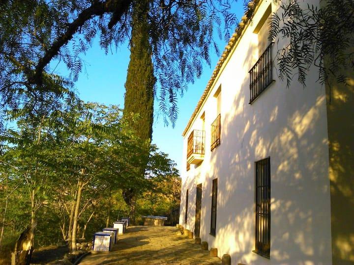 Cortijo Urra - Alojamientos Rurales & Field Centre