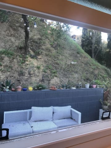 View from one of the windows, looking out. As you can tell, it's nestled on a hill and you'll experience a wooded hillside oasis in the city. It's a rare combo for this sought after neighborhood.