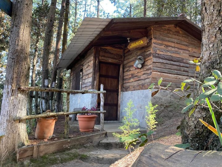 La Alameda- cabaña Isabella