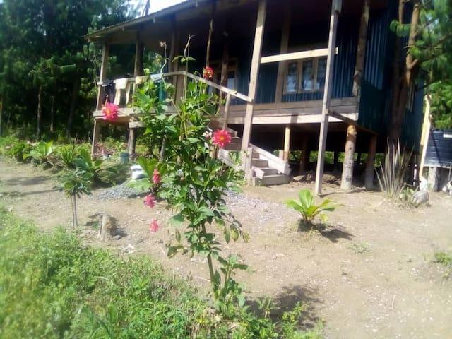 Butterfly Paradise Mountain Retreat