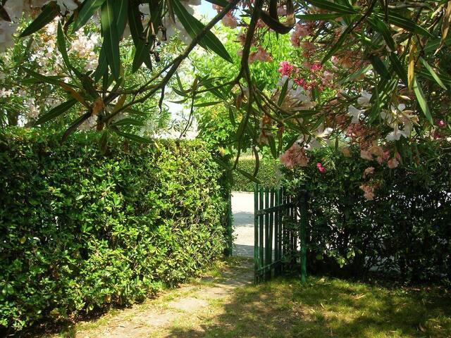 RELAX HOUSE  Sea &Cavallino Park - Marina di Castagneto Carducci - Vacation home