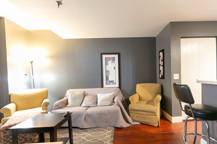 Economic Pet-Friendly 1 Bedroom Downtown Highrise