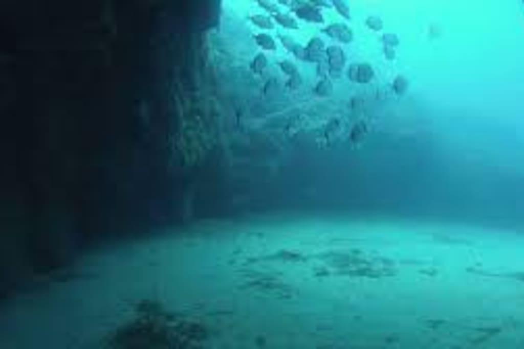 Fondos marinos de la Isla de San Andrés